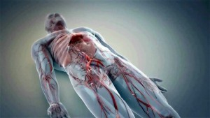 3.-3D-Medical-Animation-1024x576